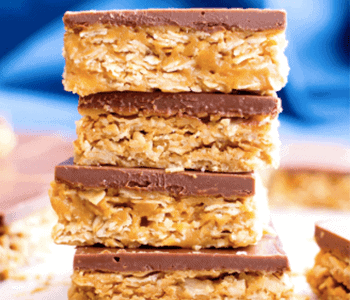 protein fudge bars